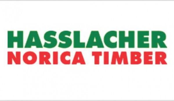Hasslacher_logo-2waxr974an0cvv76frd7uo